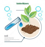 stock-vector-plant-and-fertilizer-194139566