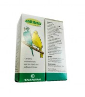 antistress-savidis-pet8